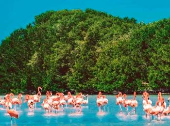 Colores de Yucatán